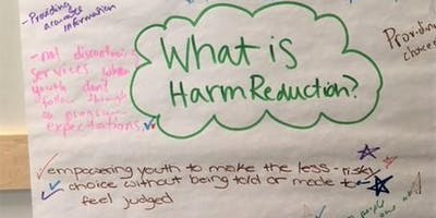 Harm Reduction for Youth Workers