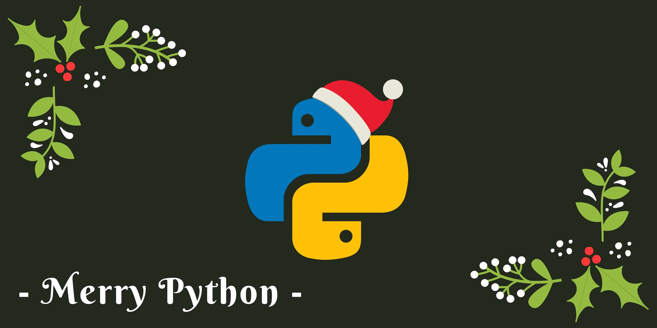 Learn to Code Over the Holidays, Introduction to Python Workshop