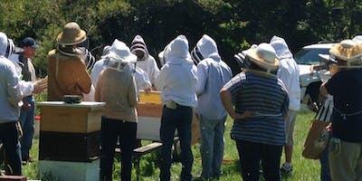 Beginner Beekeeper Class 2019 Saturday track