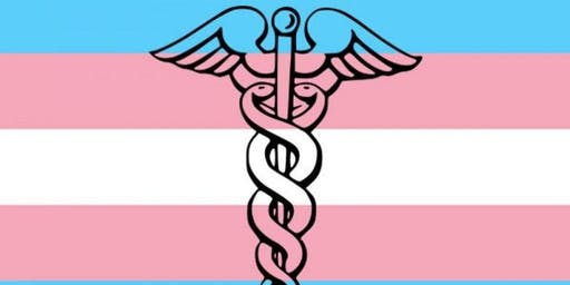 Gender Affirming Primary Care for Physicians, NPs, Nurses and Residents