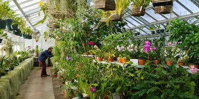 Getting to Know Orchids: An Introduction - 2019