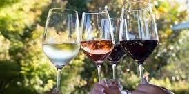 Valley Vines Wine Tasting