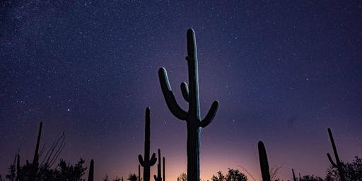 Saguaro National Park Night Skies Photography Workshop
