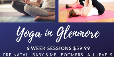 All Levels/Ages Yoga