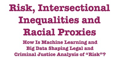 "Risk, Intersectional Inequalities and Racial Proxies: How Is Machine Learning and Big Data Shaping Legal and Criminal Justice Analysis of ""Risk""?"