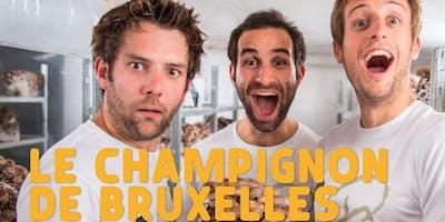 Champignons in Anderlecht
