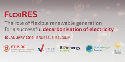 FLEXIRES: The role of flexible renewable generation for asuccessful decarbonisation of electricity