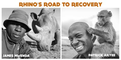 Rhino's Road to Recovery