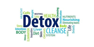 Demystifying Detoxification