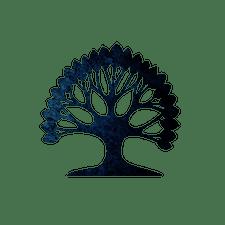 Tribe Byron Bay logo