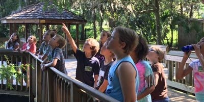 Nature Around the World Camp - NEW!