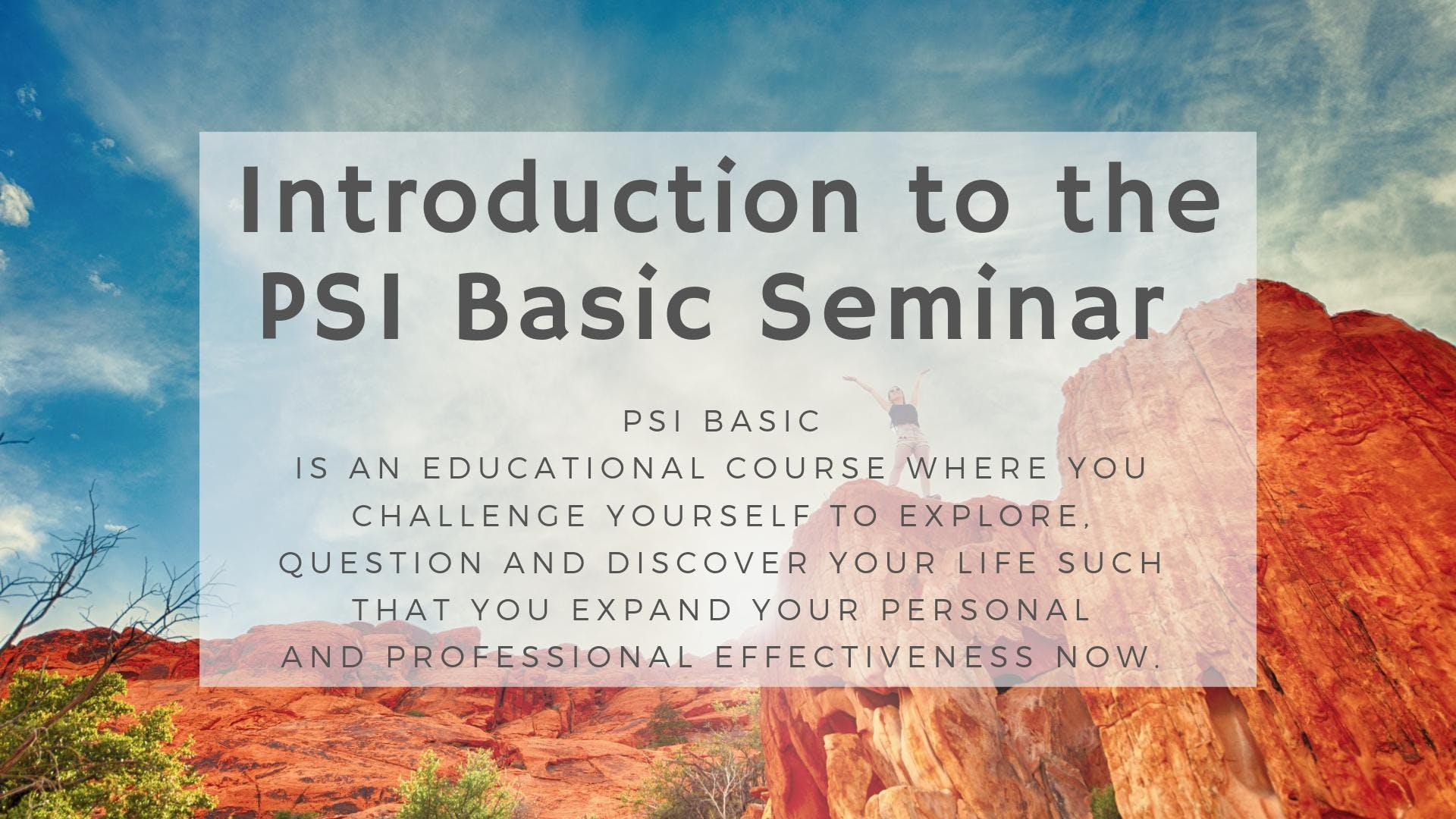 PSI Basic Seminar Introduction