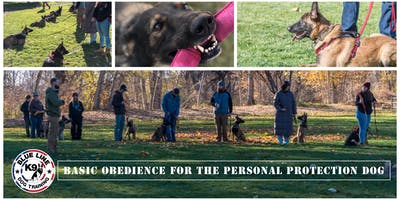 Basic Obedience for the Personal Protection Dog