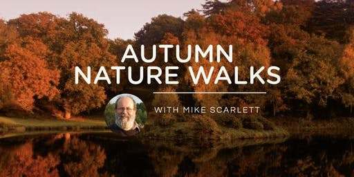 Autumn Nature Walks 2019
