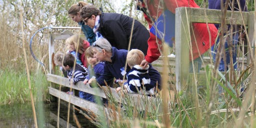 Nature Tots at Strumpshaw Fen