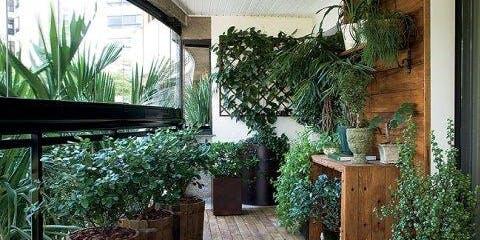 Tiny Spaces Gardening