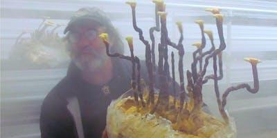 Growing Mushrooms at Home