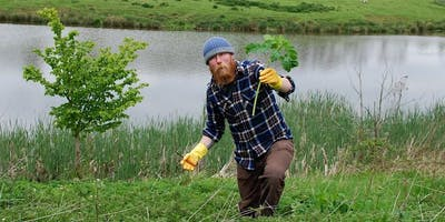 Wild Food Foraging - new class added!