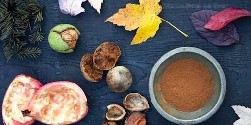 季节性色彩工作坊与Sasha Duerr和新英格兰农场到纤维