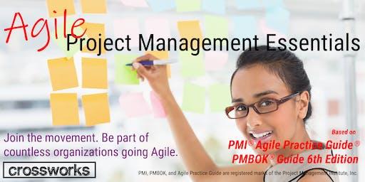 Agile Project Management Essentials (Batch 194)