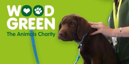 "Dog Health & Wellbeing ""MOT"" Check - Godmanchester Centre"