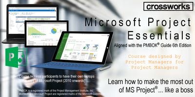 Microsoft Project Essentials (Batch 194)