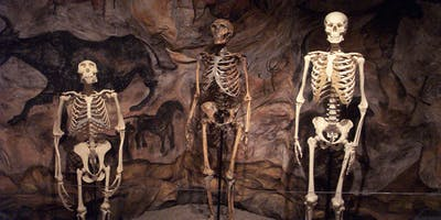 Ancient Ancestry