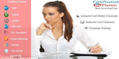 Project Management Professional (PMP) 4-days Class