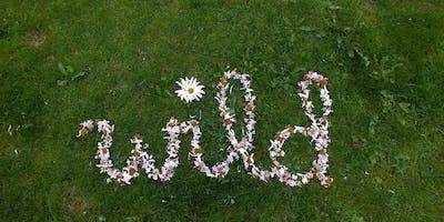 Forge Gardening Born to Be Wild: Wildflower Flower Arranging