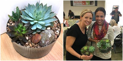 Workshop: Modern Succulents with Wine