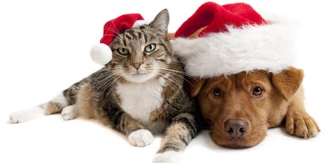 """Holidays went to the Dogs....& Cats!"" - Our Annual Pet Day tickets"
