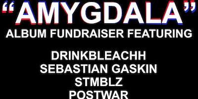 "drinkbleachh \""amygdala\"" album fundraiser"