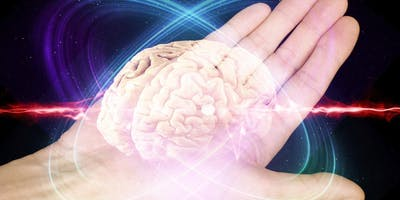 Using Your Brain more effectively in Business - A free introductory workshop exploring how your brain works to help you lead and manage more effectively in your organisation