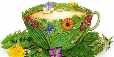 Monthly Tea Chat: Herbal Allies for Mental & Physical Health