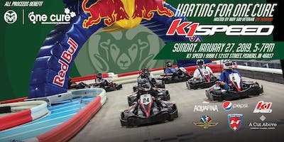 Karting for One Cure: A Celebrity Karting Enduro hosted by Jay Howard