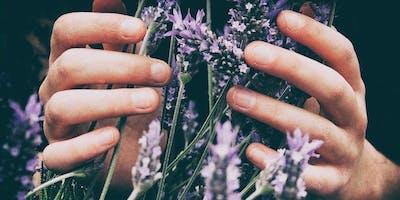 FREE+Herbal+Meditation+and+Mini+Reiki+Session