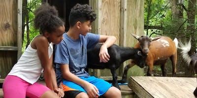 Just Kidding Around Summer Farm Day Camp 2018 (whole week)