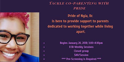 Co-Parenting Support Group: Tackle Co-Parenting With Pride