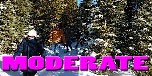Moderate Snowshoe--1 pm