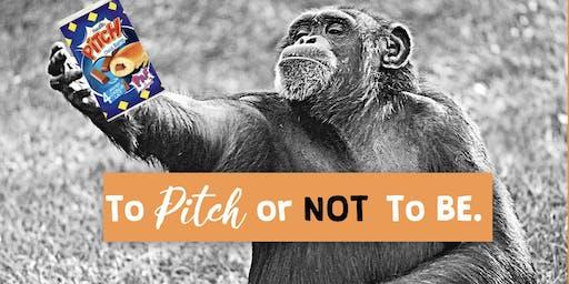 Le bonheur est dans le Pitch : aspirez à l'élégance du Pitch !