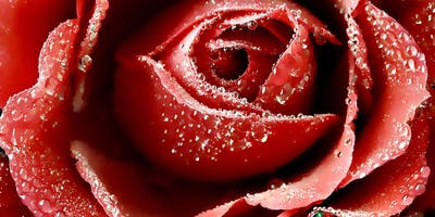 Valentines Singles' Mingle
