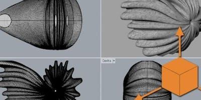 Workshop: Modellazione 3D - Latina