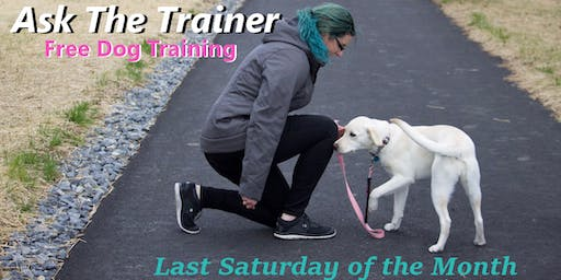 FREE & Fun Dog Training