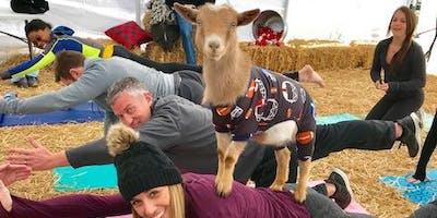 Goat Yoga Nashville- Get your Goat on 2019