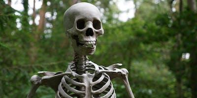 No Bones about Bones! (Osteoporosis/Osteopenia)