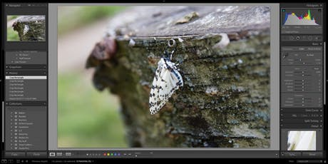 Intro to Lightroom tickets