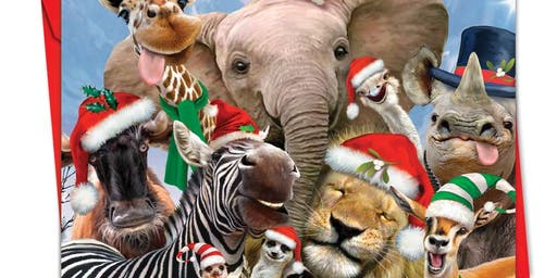 2019 Christmas Party - Melbourne Zoo