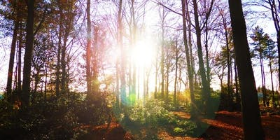 Course on Tour - Introduction to Forest School