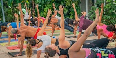 Sunday Zen Garden Yoga