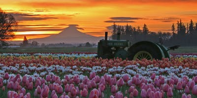 Tulip Festival Season Pass Holiday Sale